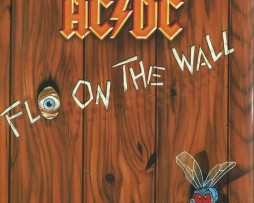 ac dc fly on the wall